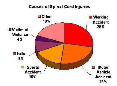 Portland spinal cord injury lawyer sci accidents causes of spinal cord injuries sciox Images